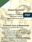 Human Evolution - New