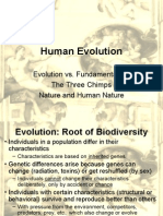 Human Evolution - New