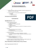 Estructura de Plan de Negocios 2012