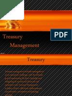 Treasury Management-shruti