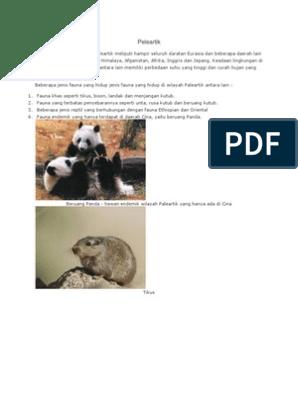 70 Koleksi Gambar Hewan Menjangan Kutub Terbaik