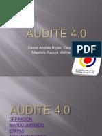 audite1.pdf
