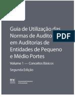 Guia Normas de Auditoria Em EPMP Volume 1 Seminario-1