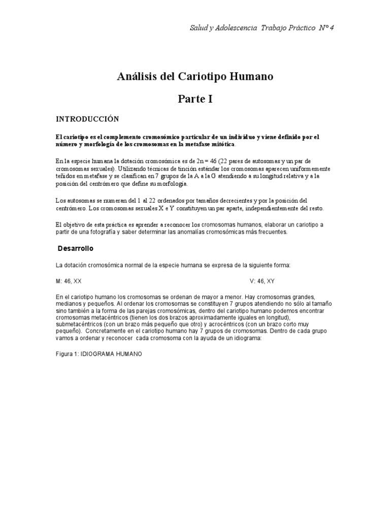 Tp 4 Cariotipo