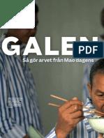 """""""Galen i Kina"""", för Modern Psykologi"""