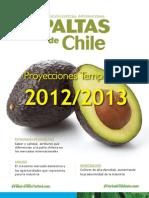 Paltas Chile e