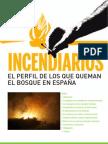 El perfil de los que queman el bosque en España