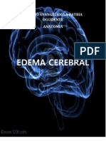 EDEMA CEREBRAL.docx