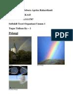Teori Organisasi Umum 2 - 1