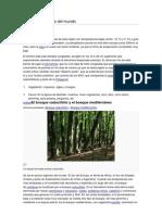 Principales Biomas Del Mundo