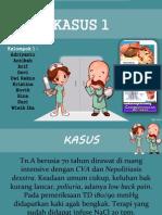 PPT ccnsd