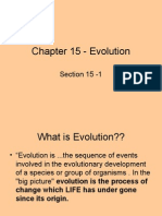 Chapter 15 - Evolution