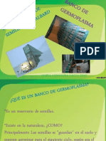 BOVEDA DE SEMILLAS.pptx
