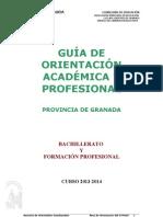 Guía al finalizar Bachillerato- FP 2013-2014