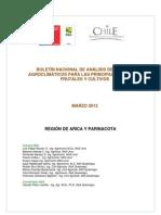 boletin informativo de agroclimas chile.pdf