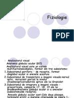 Analizatorul vizual functiile