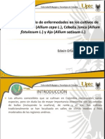 Presentacion MIE.pdf