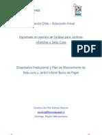 Informe Final Diplomado