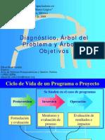 Arboles_Diagnostico.pdf