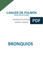Histologia de Pulmon