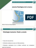 Mod2_1 Patologia mamaria.pdf