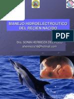 manejohidroelectroliticodelreciennacido2009