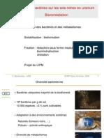 Bioremédiation.pdf