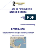 VAZAMENTO NO GOLFO DO MÉXICO - SLIDES