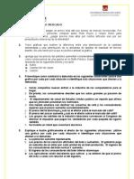practica de demanda 2013 .doc