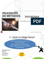 Metabolismo MMR