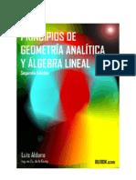 Principios de Geometría Analítica y Algebra Lineal
