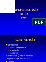 Morfofisiologia de La Piel (1)