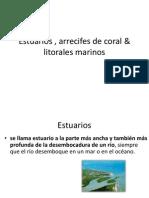Estuarios , Arrecifes & Litorales Marinos