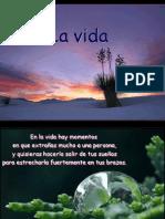 LAVIDA1.pdf