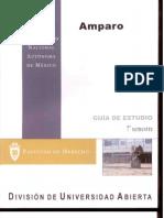 1712. Amparo (guía de estudios)