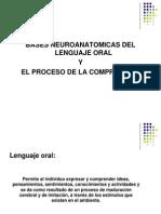Bases Neuroanatomicas Del Lenguaje Oral y La Comprension Presentacion