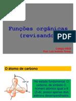 20111006121227_inedi.funcoes.organicas
