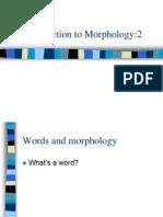 Morphology 2