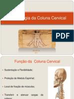Coluna Cervical - Hicc