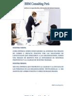 BBM Consulting Peru