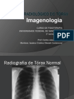 estudoradiolgicodotraxdcg-fisioterapiapdf-121028164314-phpapp02