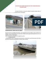 Informe Puente Palmar.docx