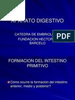 APARATO DIGESTIVO_3