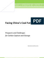 Chinas Coal Future