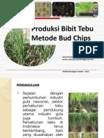 Produksi Bibit Tebu Metode Budchip_hariprasetyo_2013
