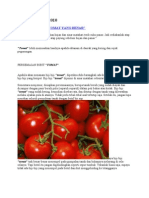 Cara Bertanam Tomat