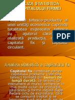 Statistica.Capitalul Fix