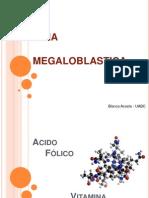 2-anemia-megaloblastica-1196993301289402-3
