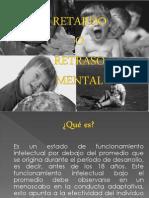 retardomental-090811201949-phpapp01