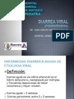 Diarrea Viral